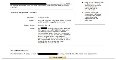 PayPal Fraud1