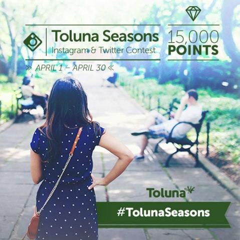 Instagram-Toluna-Seasons