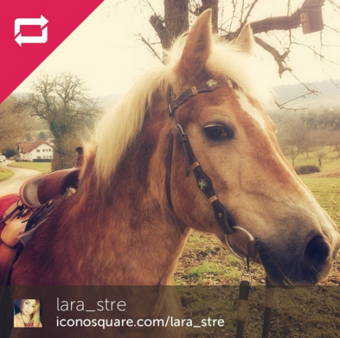 instagram winner-March